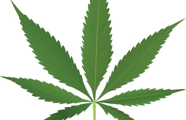 Marijuana Online: legalizzazione e sospetti