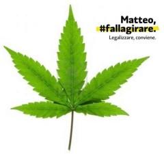 Matteo #fallagirare