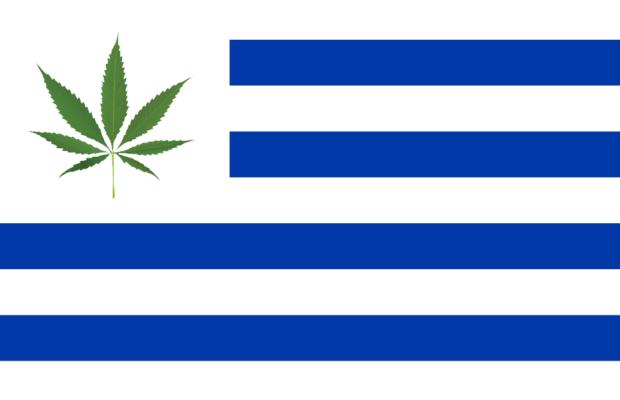 Uriguay e Marijuana