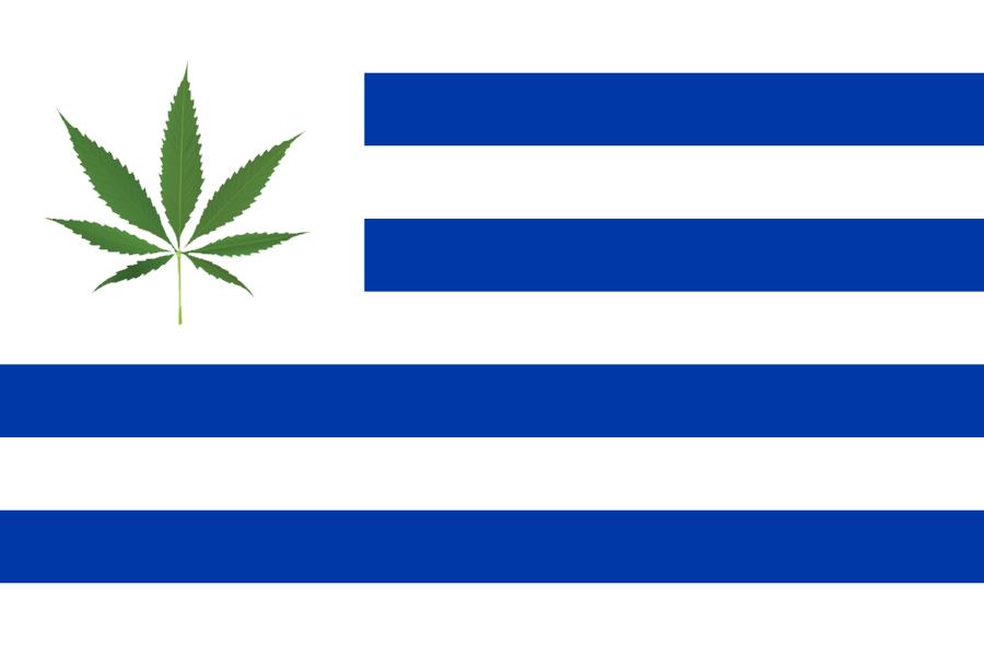Risultati immagini per Cannabis legale in Uruguay…